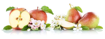 Apple and pear apples pears fruit fruits isolated on white Stock Images
