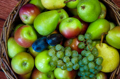 Apple, pear, plum and grape Royalty Free Stock Images