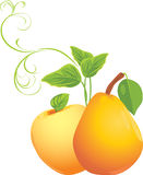 Apple and pear with sprig. Illustration Royalty Free Stock Images