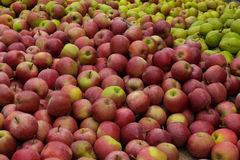 Apple and Pear Stand at a Local Market Royalty Free Stock Photography