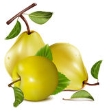 Apple and pears. Photo-realistic . Apple and pears Stock Image