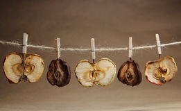 Apple  and pears dried  with a clothespeg Stock Image