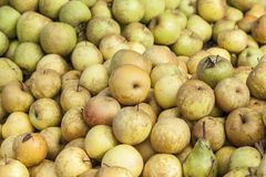 Apple and pears exposed for sale Stock Image