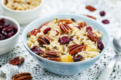 Apple Pecan dried cranberries and brown wild rice Royalty Free Stock Photos