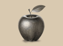 Apple pencil drawing black and white. Apple pencil illustration black and white isolated on old background Royalty Free Stock Images