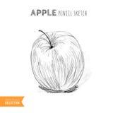 Apple pencil sketch Royalty Free Stock Photos