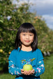 Apple Picking. A Child holding an apple from the orchard Royalty Free Stock Photos