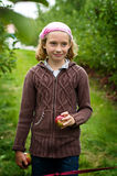 Apple picking. Young girl in an apple orchard Royalty Free Stock Image