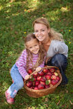 Apple picking time in autumn Royalty Free Stock Photo
