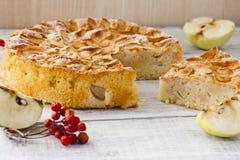 Apple pie. Autumn Apple pie with powdered sugar on white background Stock Photo