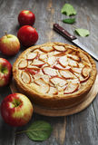 Apple pie. charlotte Royalty Free Stock Photography