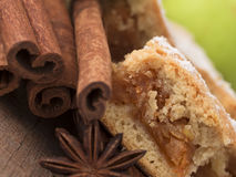 Apple pie with cinnamon Stock Photography