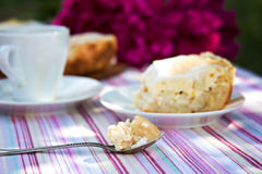 Apple pie with cottage cheese. Piece of apple pie with cottage cheese on a white plate Royalty Free Stock Image