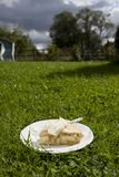 Apple pie and cream Royalty Free Stock Image