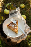 Apple pie with cream filling. A piece of apple pie with cream filling in the garden Stock Image