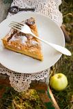 Apple pie with cream filling. A piece of apple pie with cream filling on a wooden bench in the garden Royalty Free Stock Photo