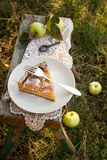 Apple pie with cream filling. A piece of apple pie with cream filling on a wooden bench in the garden Stock Images