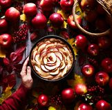 Apple pie delicious autumn or winter pastries in a woman`s hand. Autumn dish and mood. The frame is decorated with stock image