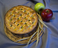 Apple pie. Apple pie on a grey background with ears.n Royalty Free Stock Images