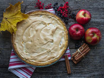 Apple pie with meringue Stock Photography
