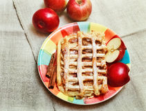 Apple Pie with Pastry Grid,Sugar Powder,on the Ceramic Plate with Cinnamon and Pieces of Fresh Apple,Top View Stock Image