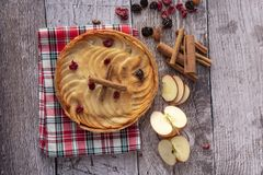 Apple pie surrounded by ingredients. On wooden background royalty free stock images
