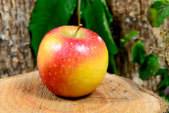 Apple on a piece of wood Royalty Free Stock Image