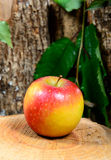 Apple on a piece of wood Royalty Free Stock Photo