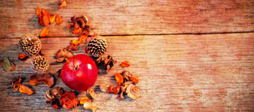 Apple and pine cone on wooden plank Royalty Free Stock Photography