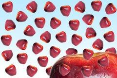 Apple piove Fotografie Stock
