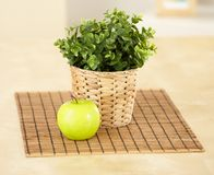 Apple and plant on table Royalty Free Stock Image