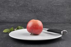 Apple on plate and shale. Colorful and crisp image of apple on plate and shale Stock Photos