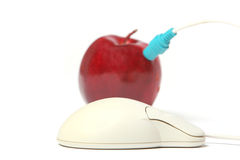 Apple plugged into mouse. Mouse plugged into a red apple royalty free stock image