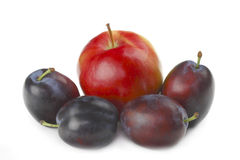 Apple and plums royalty free stock image