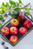 Apple plums juice Stock Images