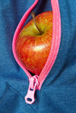 Apple in pocket, healthy lifestyle. Red apple in jackets zipper pocket Royalty Free Stock Photo
