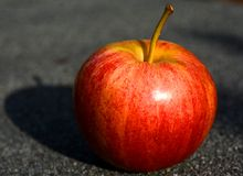 Apple. The apple is the pomaceous fruit of the apple tree, Malus domestica of the rose family (Rosaceae). It is one of the most widely cultivated tree fruits royalty free stock photo