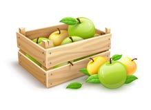 Apple porte des fruits récolte de jardin dans la boîte en bois Image libre de droits