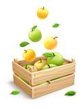 Apple porte des fruits tombant dans la boîte en bois Images libres de droits