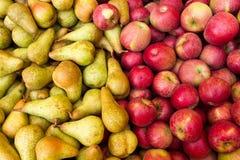 Apple portent des fruits Images stock