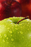 Apple portent des fruits Photos libres de droits