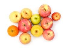 Apple portent des fruits Image libre de droits