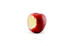 Apple portent des fruits Photo stock