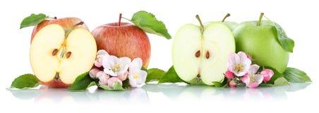 Apple portent des fruits des fruits de pommes coupés en tranches d'isolement sur le blanc Photo libre de droits