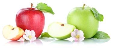 Apple portent des fruits des fruits de pommes d'isolement sur le blanc Images libres de droits