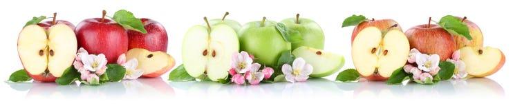 Apple portent des fruits des fruits de pommes dans une moitié de tranche de rangée d'isolement sur le blanc Photographie stock libre de droits
