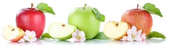 Apple portent des fruits des fruits de pommes dans une rangée d'isolement sur le blanc Photo stock