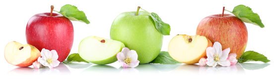 Fruits apple poire orange pamplemousse mandarine kiwi for Portent fruit