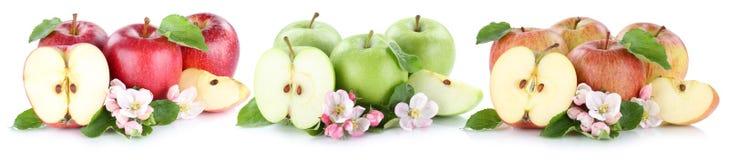 Apple portent des fruits des fruits de pommes dans une tranche de rangée découpée en tranches d'isolement sur le petit morceau Images libres de droits