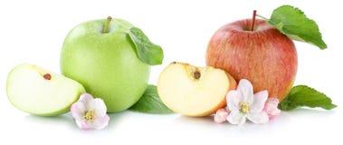 Apple portent des fruits des fruits frais de pommes avec des feuilles d'isolement sur le blanc Photo stock